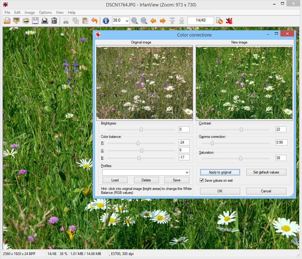 IrfanView Screenshot 5